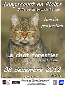 le-chat-forestier