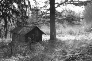 photo-de-alain-duchesne1
