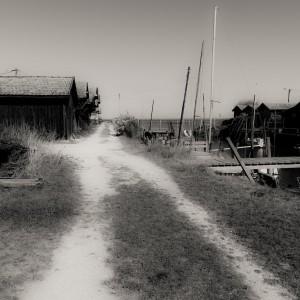 photo-de-laure-conry