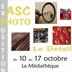 Expo à Chevigny St sauveur