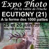 Expo à Ecutigny
