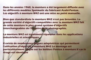 1-pieride-beroflex-135-texte